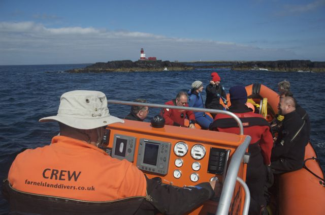 Diving at the Farne Islands