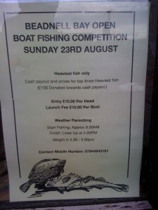Open Boat Fishing Competition Poster