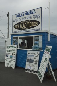 Billy Shiel boat trips to the Farne Islands